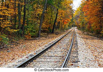 Railraod tracks lead the eye through vivid fall foliage in rural central Indiana.