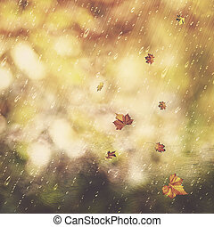 Autumn rain. Abstract seasonal backgrounds with fall and water drops
