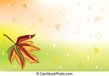 Autumn rain and golden leaf
