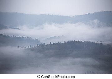 Autumn rain and mist in mountains. Morning fog