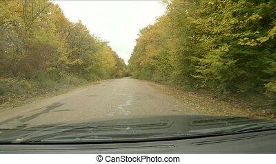 Autumn rain on the windshield of the car