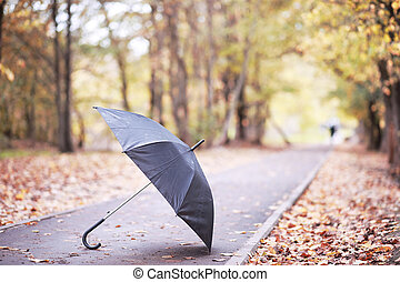 Autumn rainy park in October