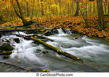 Autumn Rapids - This is the lower part of Twelve Mile Creek...