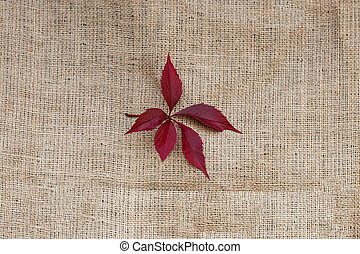 autumn red leaves on sack texture background