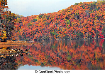 Autumn reflections at Loch Raven - Vivid Autumn colors...