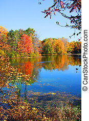 Autumn reflections - Colorful autumn tree reflections in the...