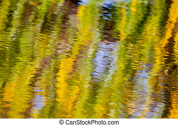 Autumn Reflections of a willow tree