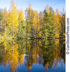 Autumn reflections on a lake