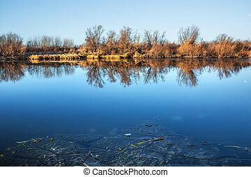 Autumn river chick. Western Siberia, Novosibirsk region - ...