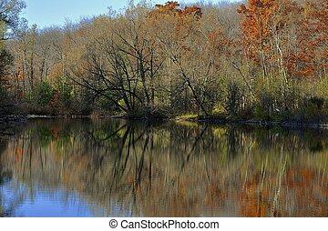 Autumn River Edge