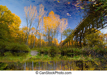 Autumn River Reflections
