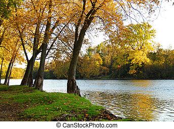 Autumn Riverbank Landscape