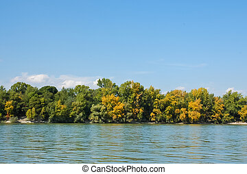 Autumn riverside with colorful tree