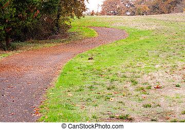 Autumn Road 1