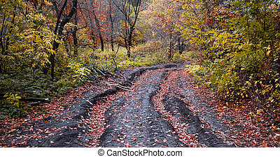 Autumn road in the forest with red leaves in a deep rut