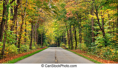 Autumn road in the smokey mountains in Tennessee.