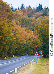 Autumn Road