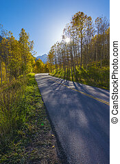 Autumn Road to the Maroon Bells