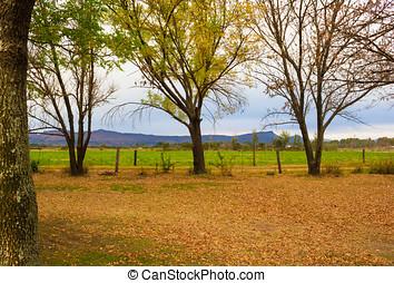 Autumn rural landscape in South Africa