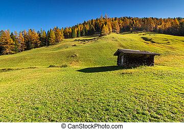 Autumn rural mountains scene with traditional alpine hut. Hiking in Austrian Alps, Tyrol, Austria.