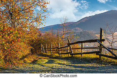 autumn rural scenery with fence on hillside. yellow foliage...