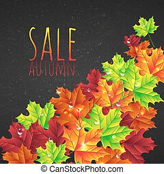 Autumn sale background with leaves