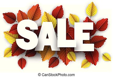 Autumn sale sign with color birch leaves.