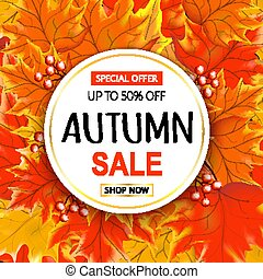 Autumn sale text banner with colorful seasonal fall leaves back