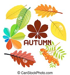 Autumn Sale Vector Background with Leaves