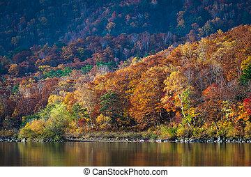 Autumn scene at Biwa pond