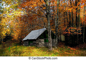 Autumn Scene - farm house and colorful trees during autumn...