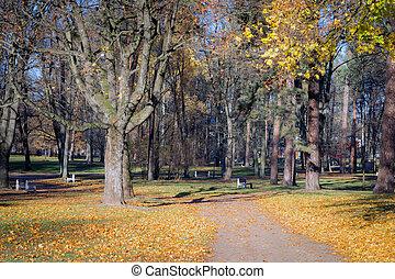 Autumn scene in a city park