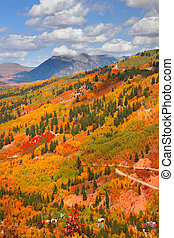 Autumn scene in Colorado - Colorful trees on Rocky mountains...