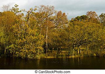 Autumn scene in Scottish lake