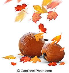 Autumn scene of ripe pumpkins