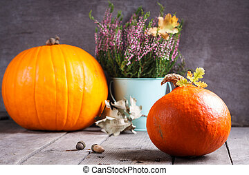 Autumn scene with pumpkin, heather, oak acorn and leaves.
