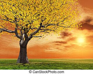 Autumn scenery - Beautiful autumn scenery