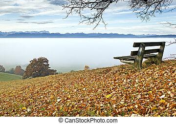 autumn scenery - An image of a nice autumn landscape
