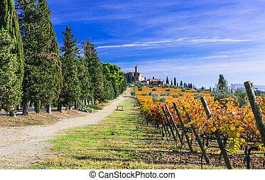 Autumn scenery . Tuscany- famous wine region of Italy. Castello di Banfi
