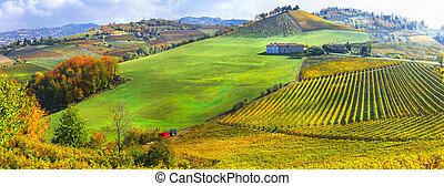 Autumn scenery, Vineyards in contryside of Piedmont, Northen wine region of Italy