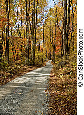 Autumn Scenic, East Tennessee - Autumn Scenic, Vibrant...