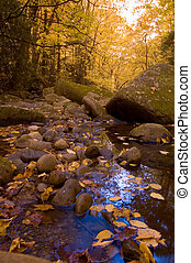 Autumn Scenic, Vibrant Colors, East Tennessee