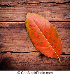 Autumn season and peaceful concepts. Orange leaves falling on rustic wooden background .