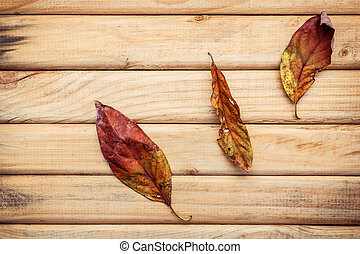 Autumn season and peaceful concepts. Dried Orange leaves falling on rustic wooden background .