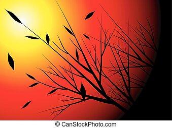 autumn season and sunset