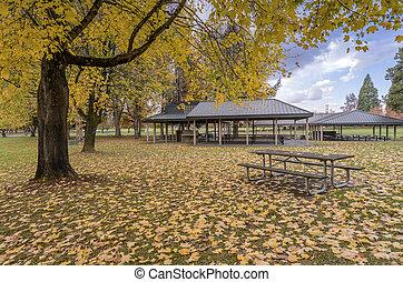 Autumn season in a park Oregon.