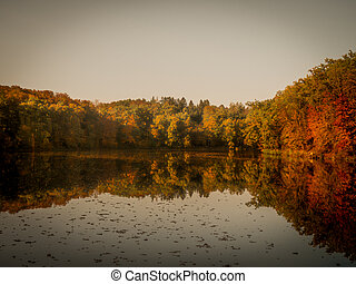 Autumn season reflections in lake.