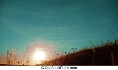 Autumn season silhouette landscape dry brown grass and high...