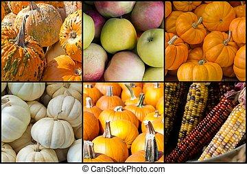 Autumn Seasonal Fruits Vegetables