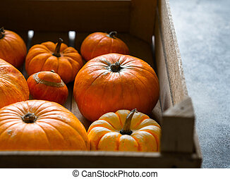 Autumn seasonal orange pumpkins of various sizes in a large wooden box.